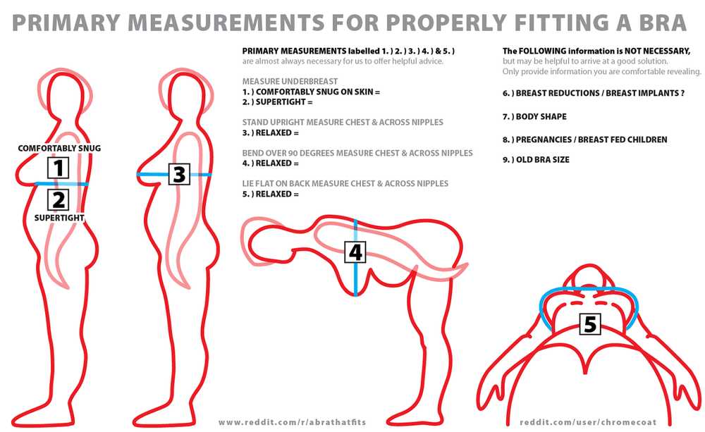 a3329f4c10 Image via   abrathatfits  nbsp . Image via  abrathatfits · my measurements  via Bra Size Calculator