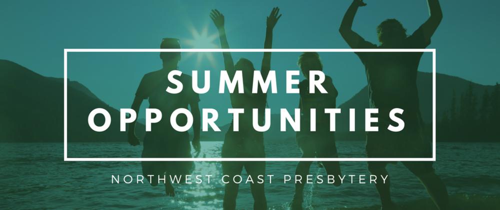 Summer Opportunities.png