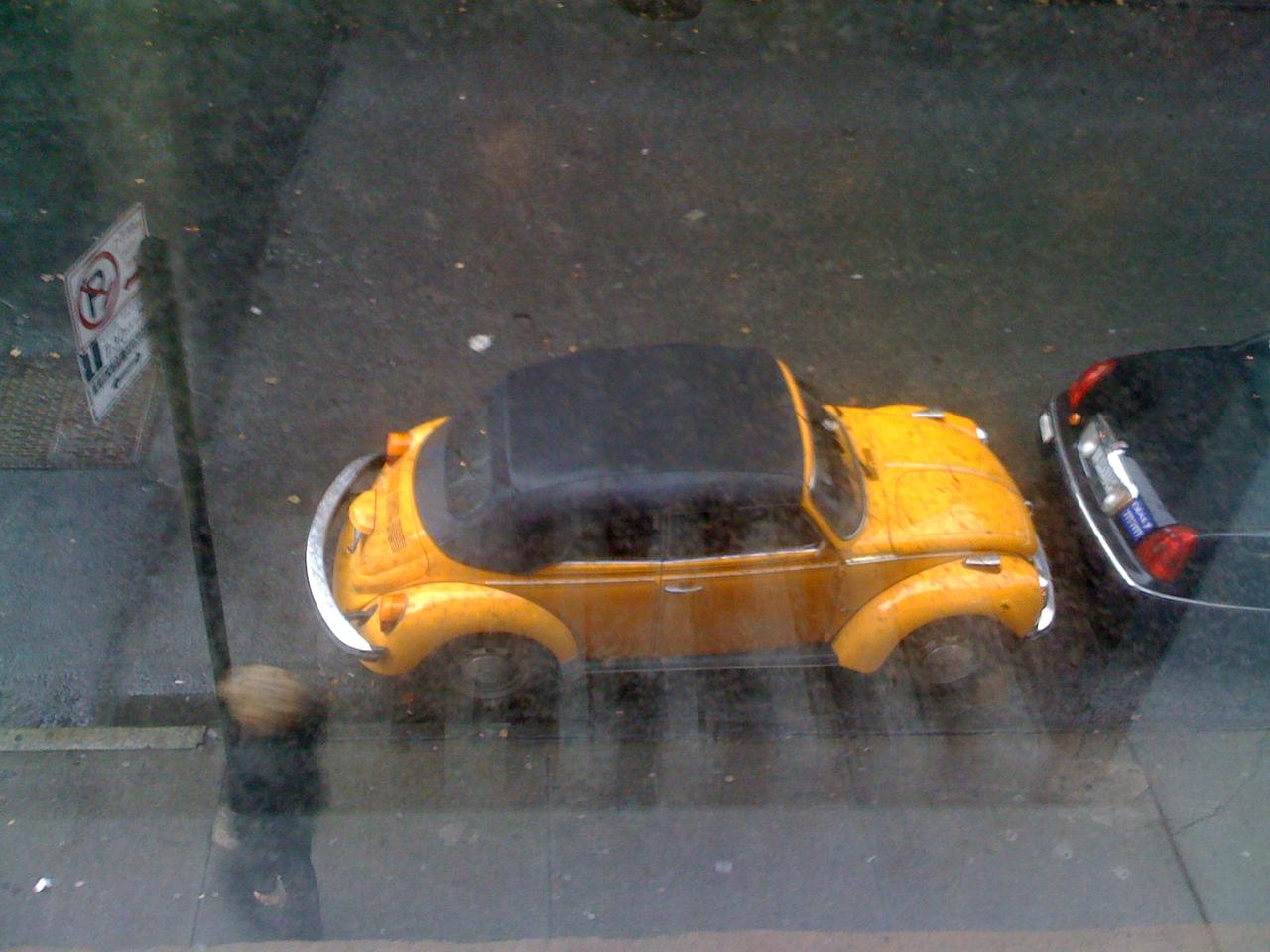 Outside my window.