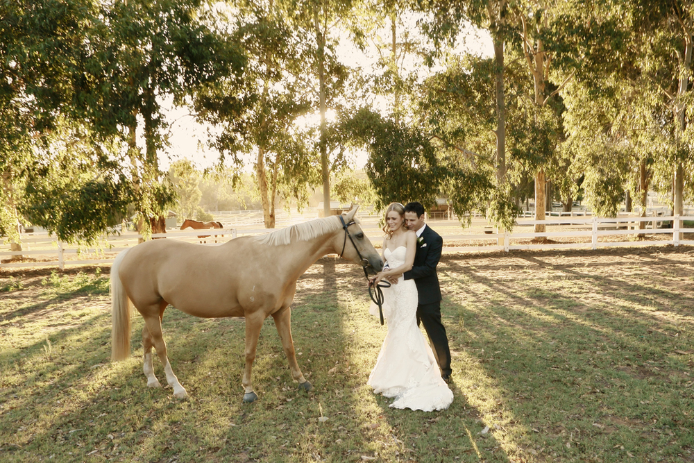 swan valley wedding