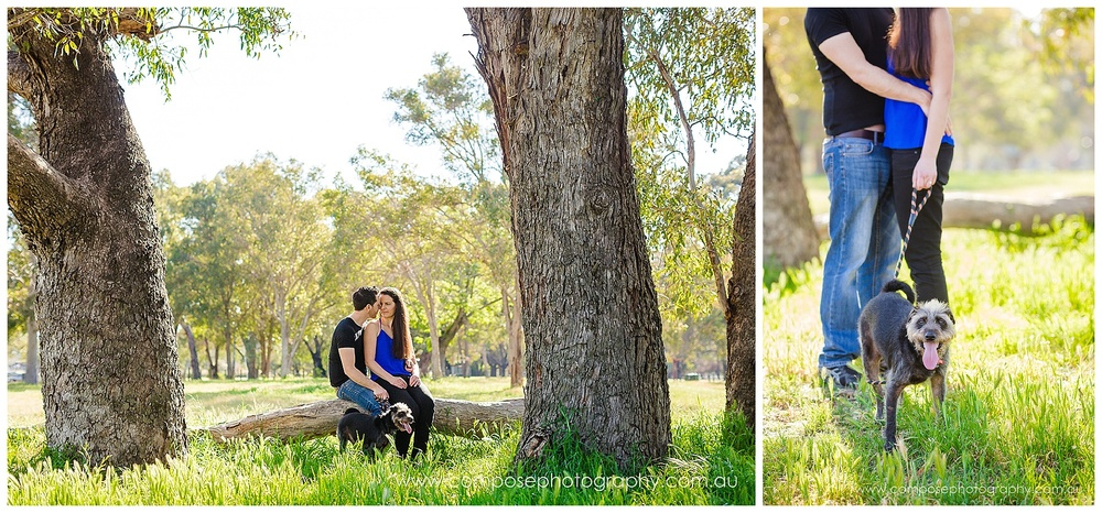 pet photographer perth