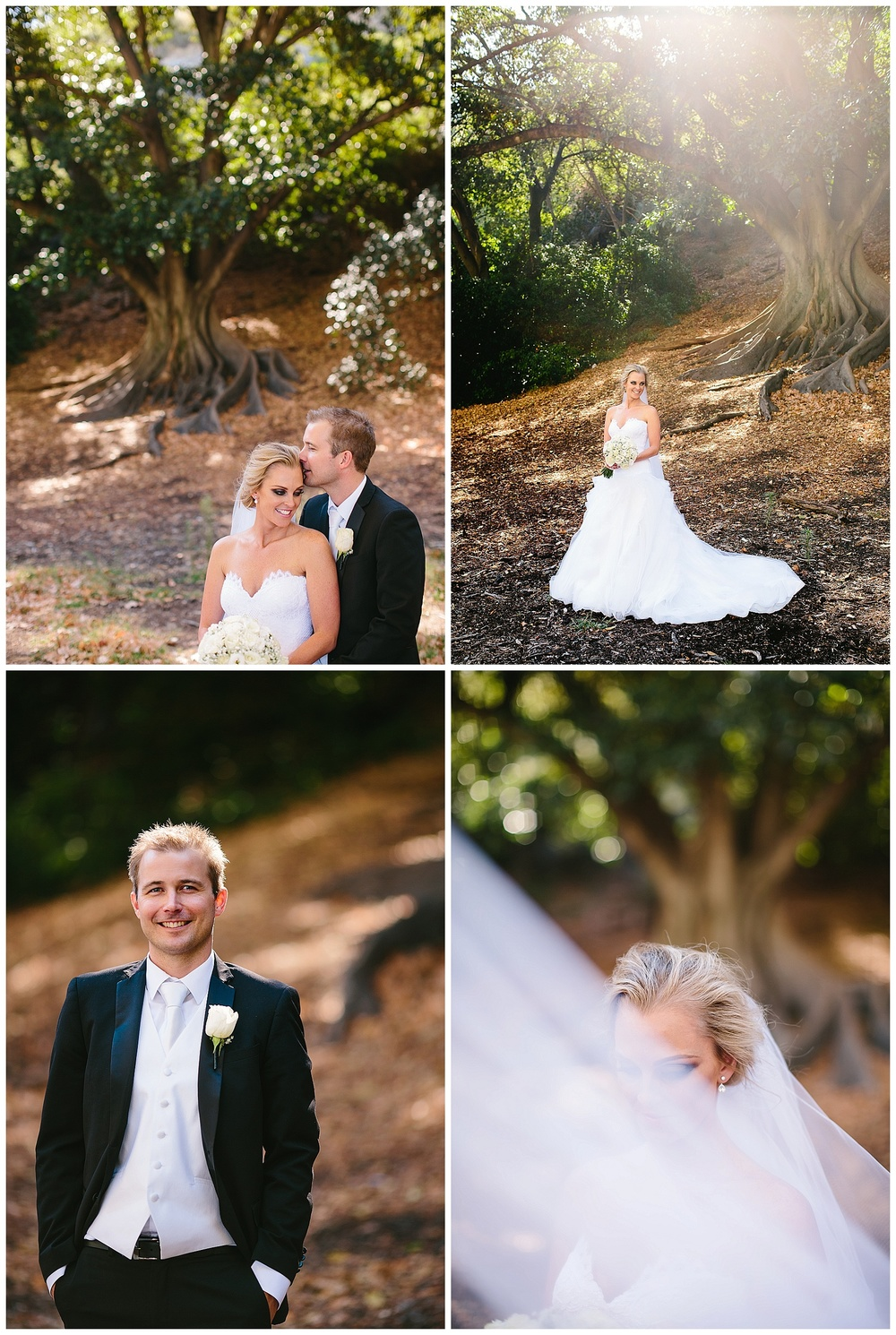 wedding photos with fig trees perth