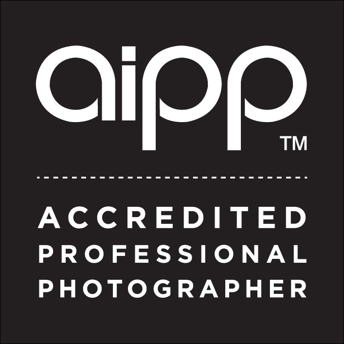 Click the logo to return to the AIPP website.