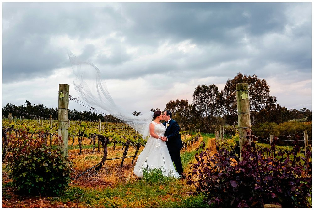 Swan Valley Vineyard Wedding