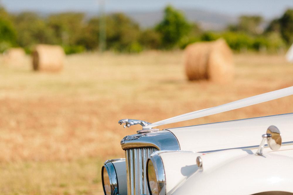 Vintage Jaguar Wedding Car