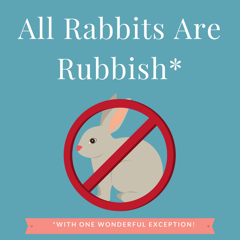 All Rabbits Are Rubbish*.jpg