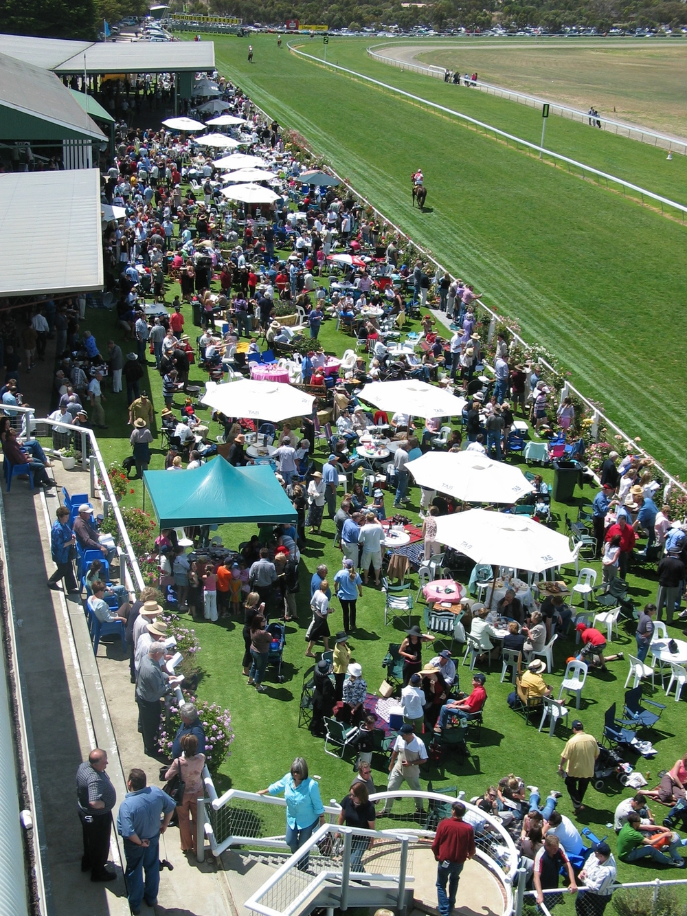 Becoming o  ne of the most popular race days of the South Australian racing season