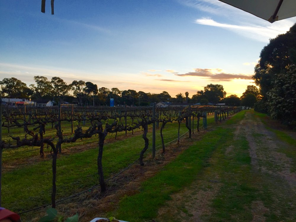 Sunset on a Friday arvo sippin' on Grenache #goals.