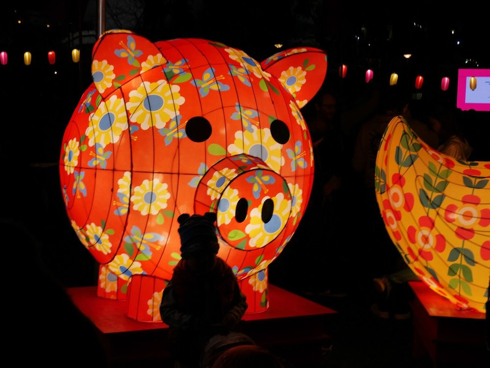 Moon Lantern Parade.jpeg