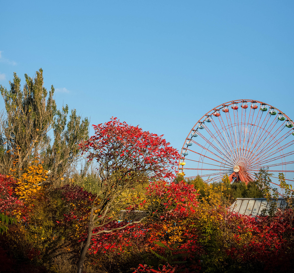 Travel: A day at Spreepark in Berlin