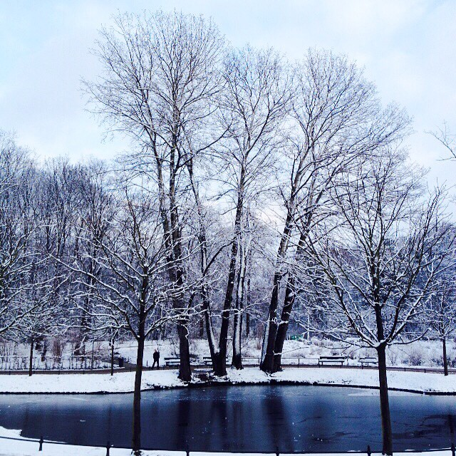 Winter wonderland in Berlin ❄️