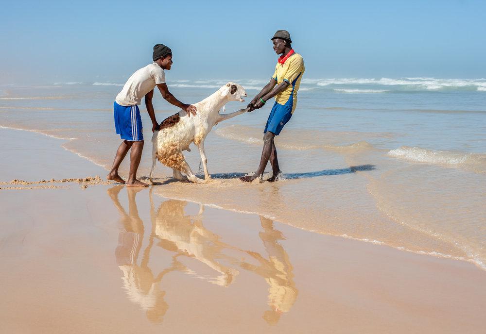 Senegal-19-1.jpg