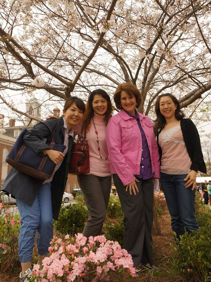 cherry blossom 20.jpg