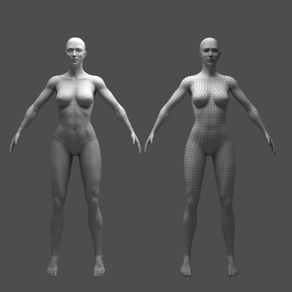 Female-Wip topo stage Vray Wire.png