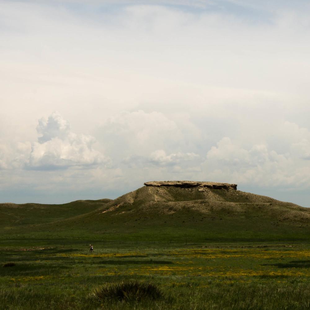 Grassland no.6