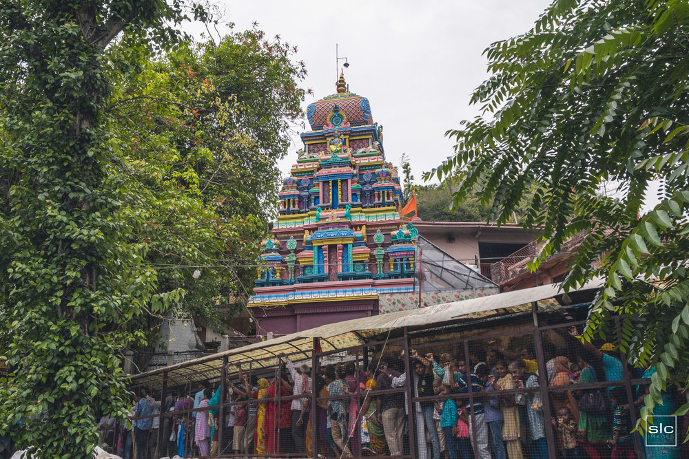 India36