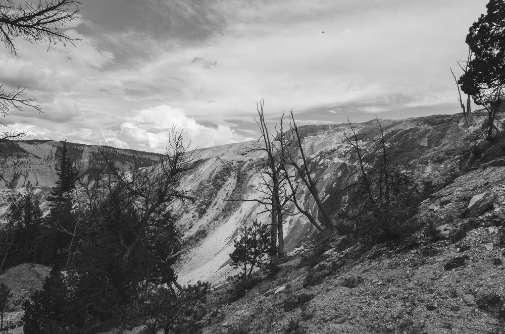 Yellowstone Trip-260.jpg