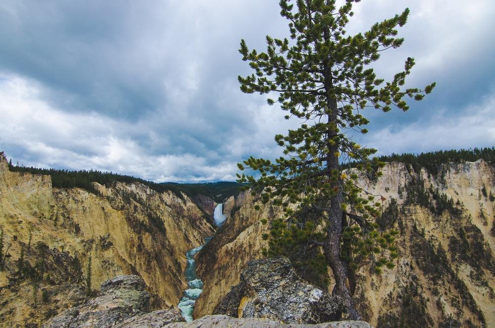 Yellowstone Trip-292.jpg