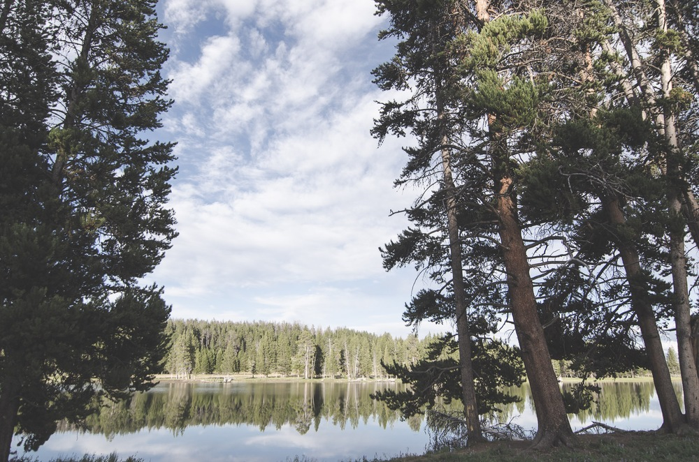 Yellowstone Trip-324.jpg