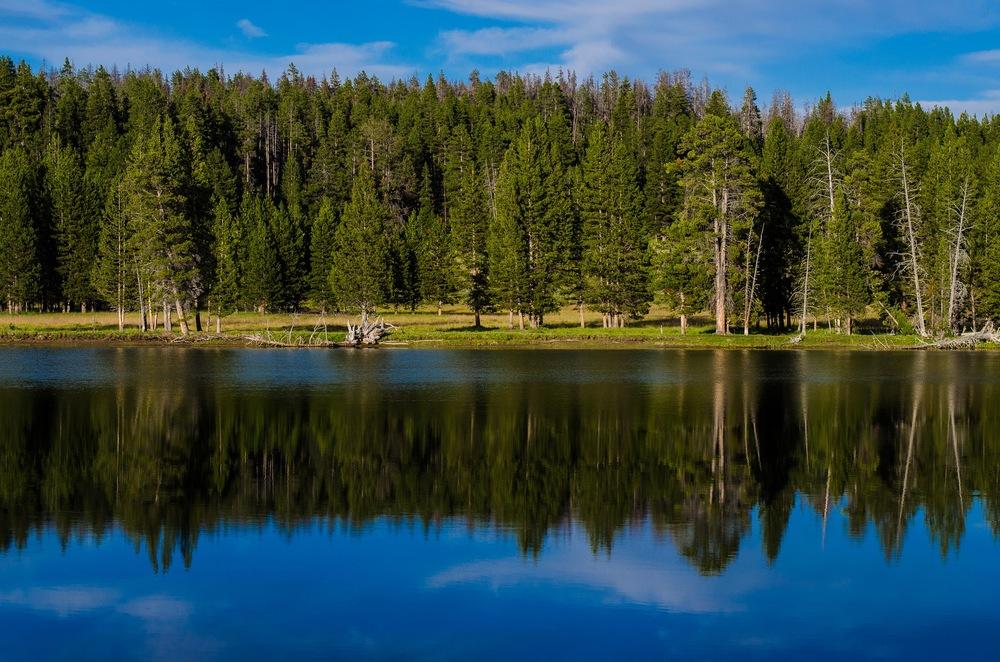 Yellowstone Trip-327.jpg