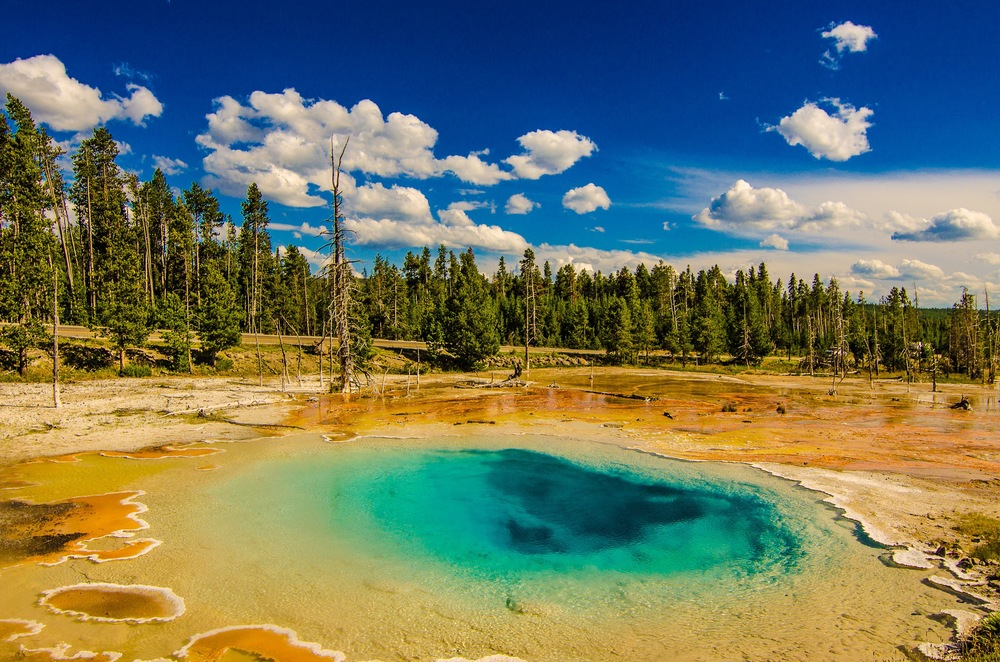 Yellowstone Trip-407.jpg