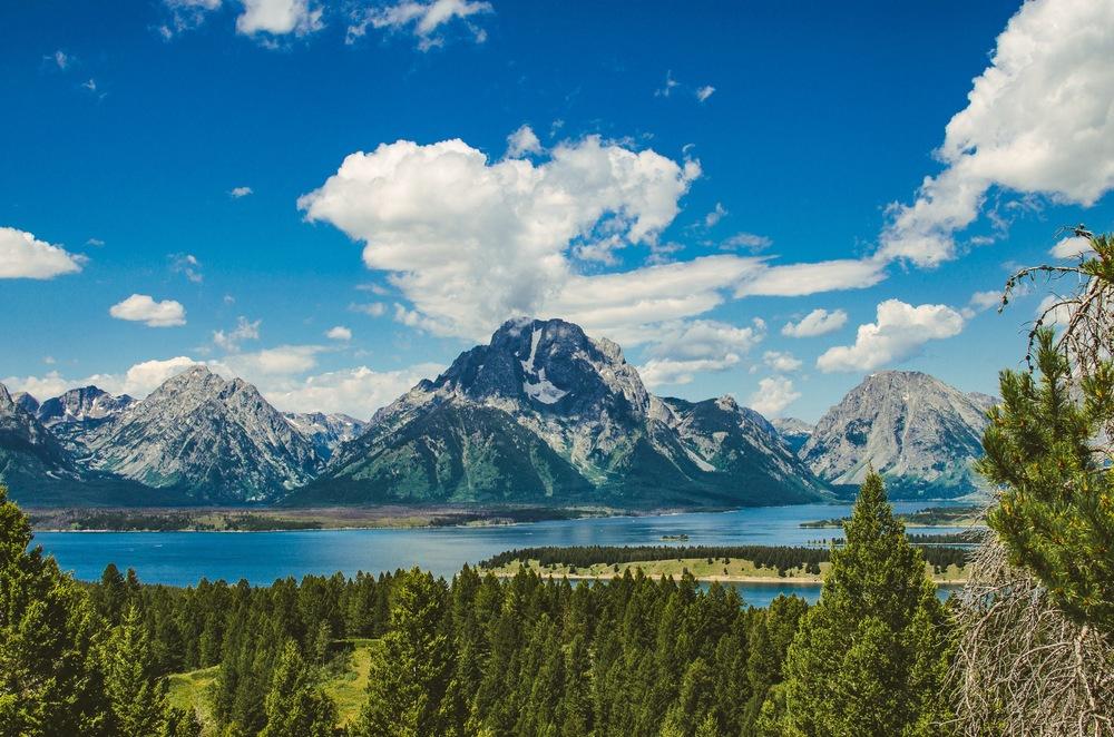 Yellowstone Trip-459.jpg