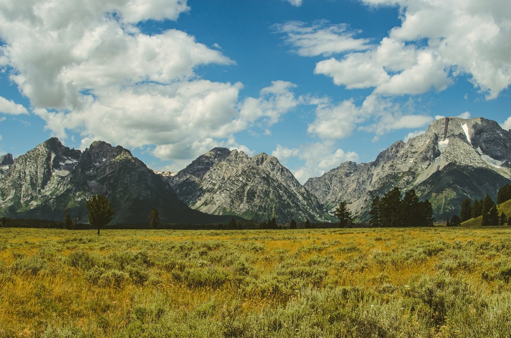 Yellowstone Trip-467.jpg