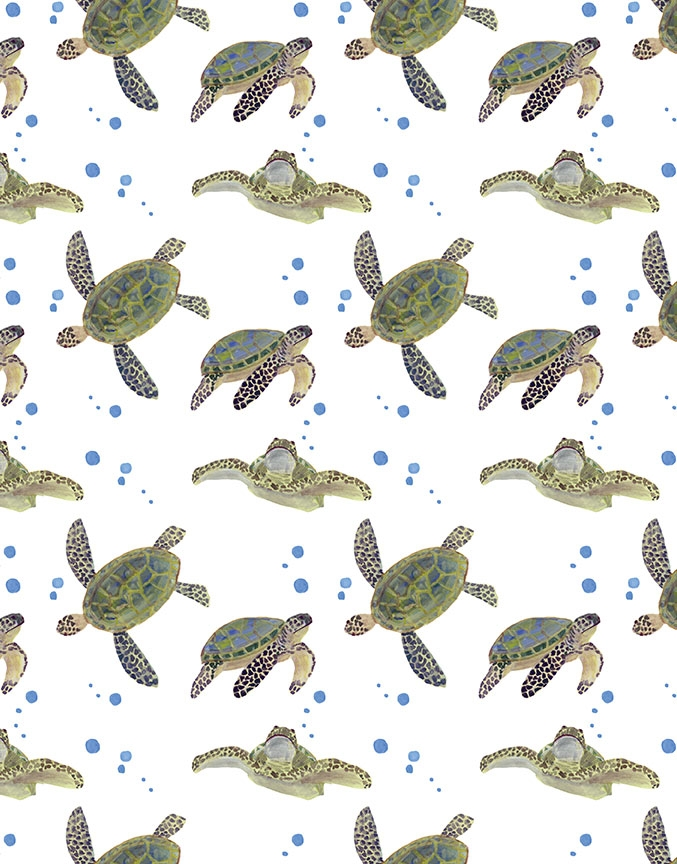 betsey-hodson-turtles.jpg