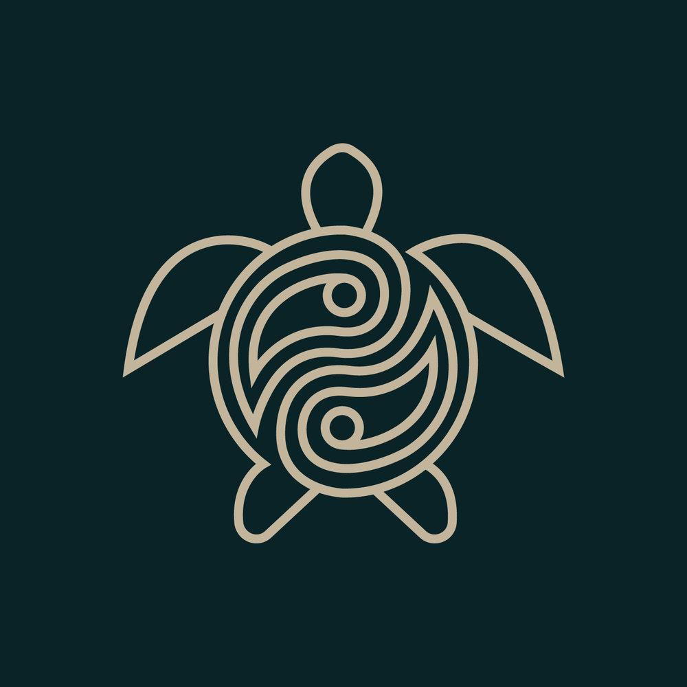 turtle2-02.jpg