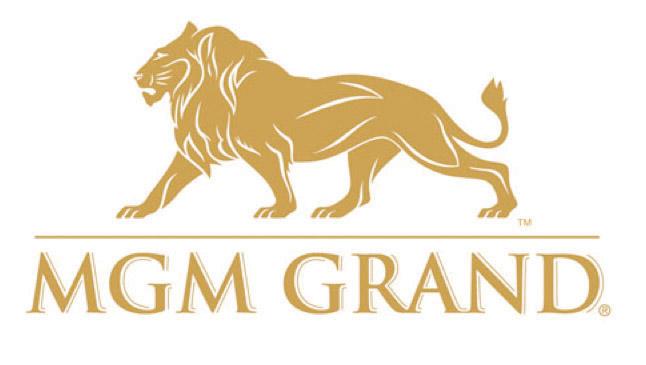 Z Form Uniform Kelsy Zimba MGM Grand.jpg