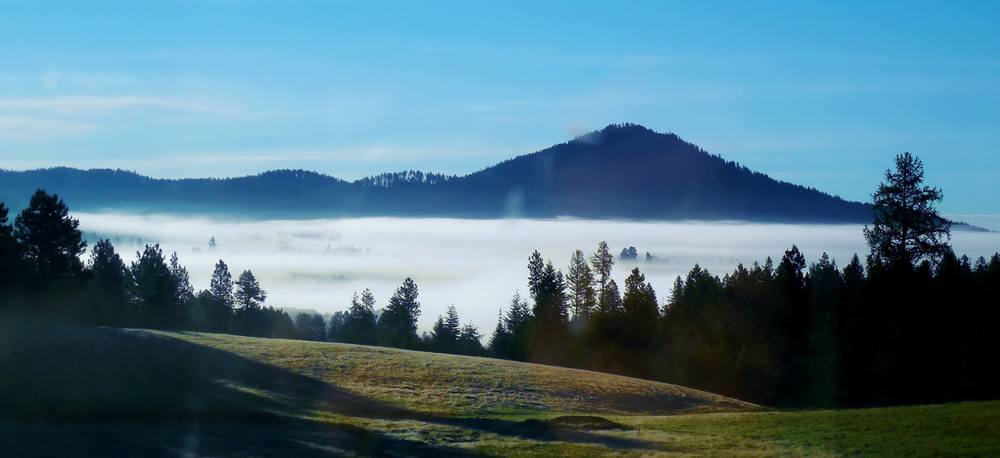 Tourmaline farms, deary Idaho