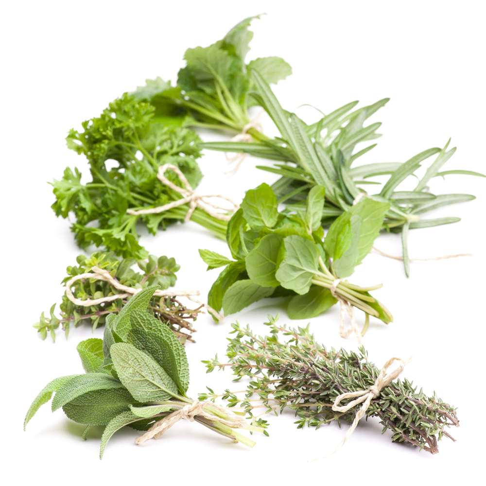 Herbs provide a rich source of bioactives with demonstrated nutrigenomic activity