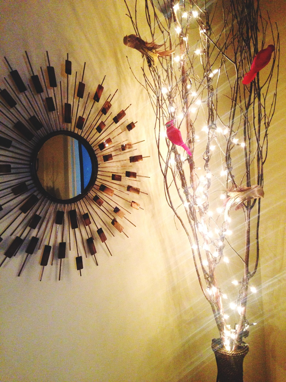 Lighted branches & cardinal decorations in our downtown office