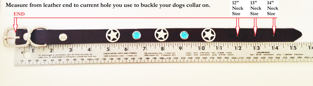 How to measure neck size by current collar.