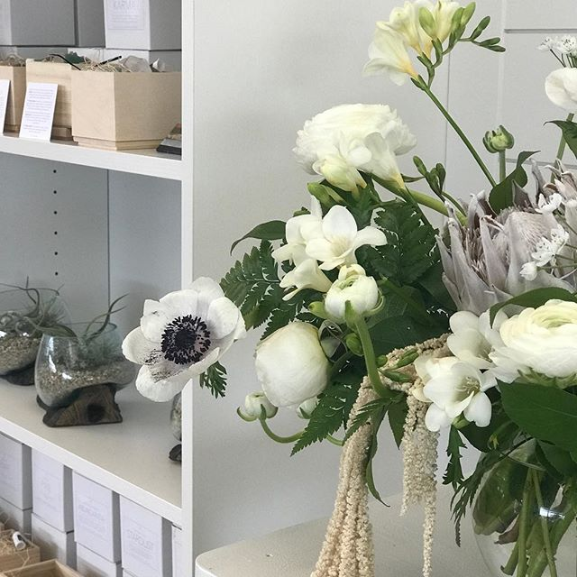 How we love anemones and ranunculus . . . #yqrflowers #wascanaflowershoppe #wascanaflowers #designerschoice