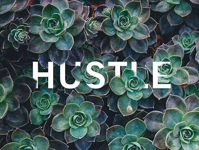 2016. It's the year to hustle. 💪🏼 #photoshop #typography #succulents #nature #design #earth #psd #hustle #beauty #thedesigntip @thedesigntip