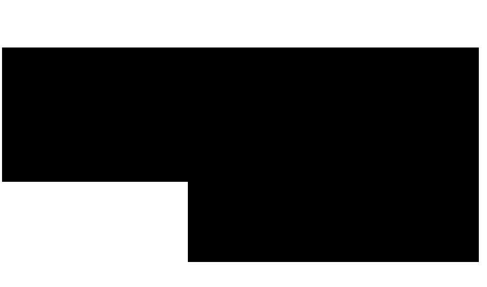 Ballasox Logo-black urban ballerina.png