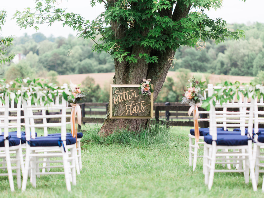 Intimate Wedding Ceremony under tree at Rixey Manor