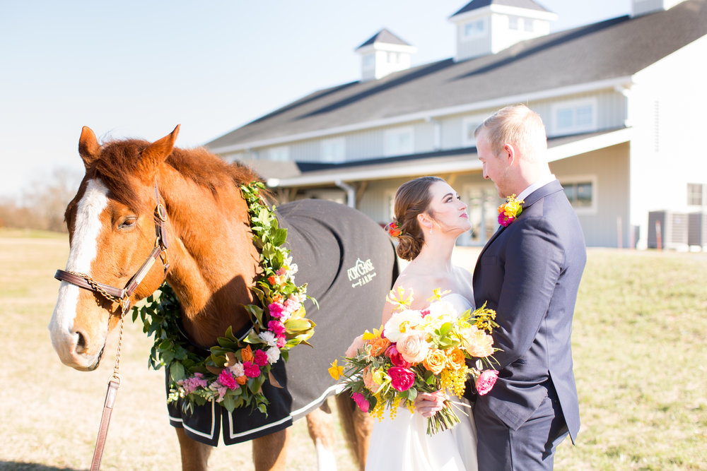 Horse with garland for barn wedding in Middleburg, VA