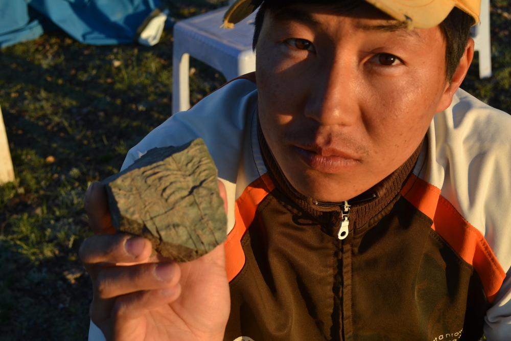 Early arthropod trace fossil