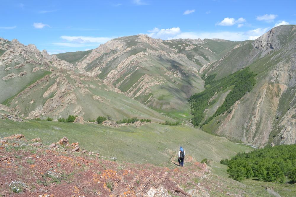 Base of the Bayangol Fm in Orolgiin Gorge