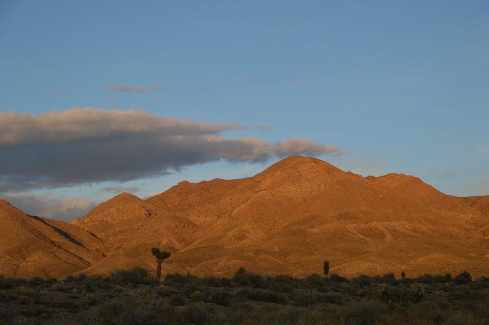 Mt. Dunfee, an Ediacaran fossil locality in NV, at sunset