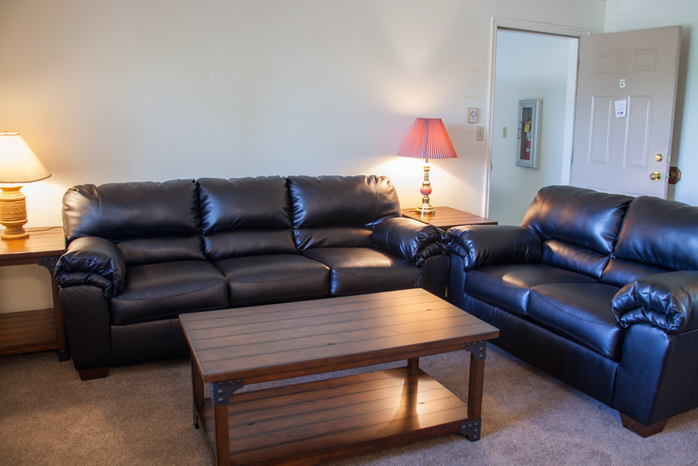 Newly remodeled living area - *Only available in selected apartments