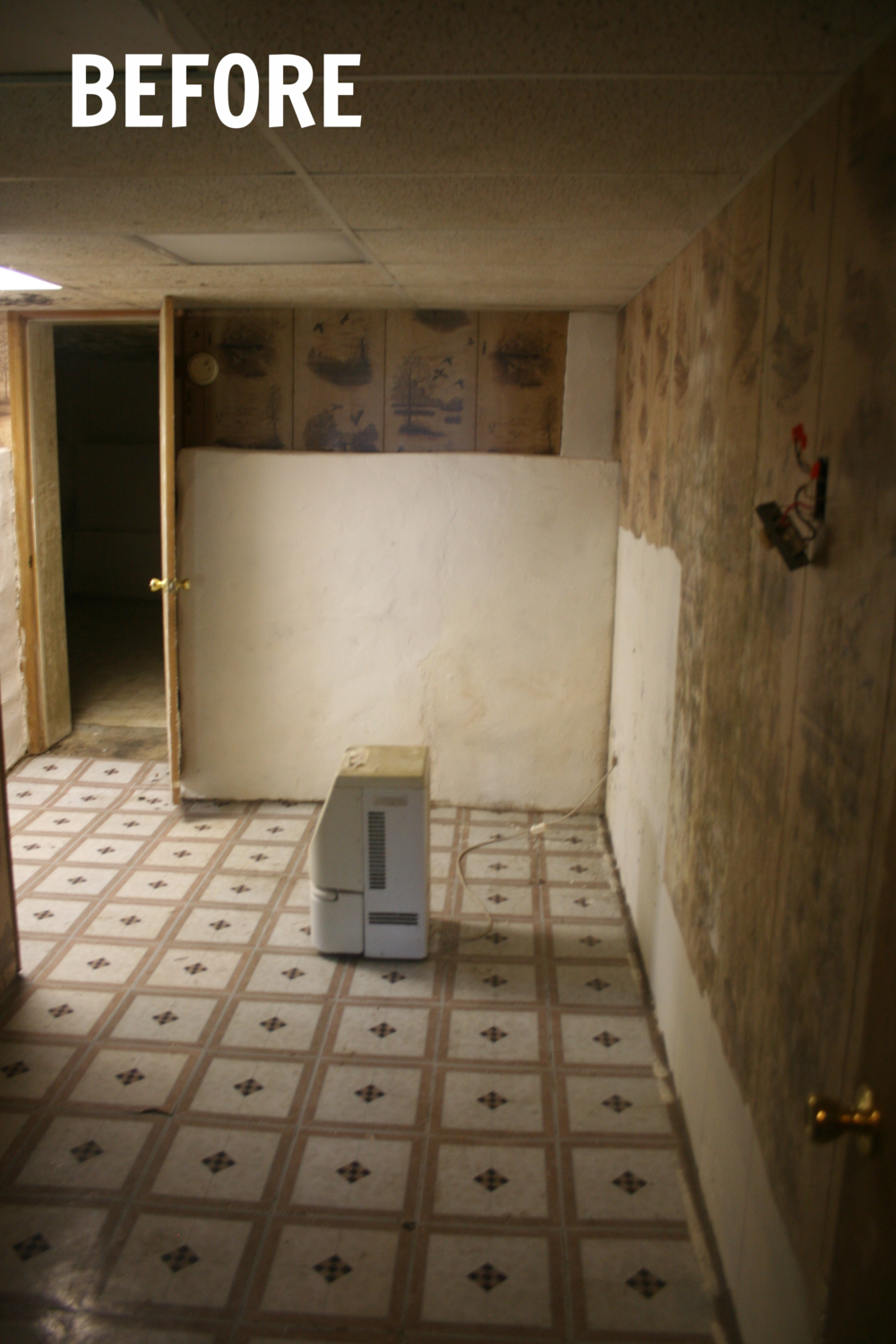 How To Remove Mold Mildew From Your Basement Part 2
