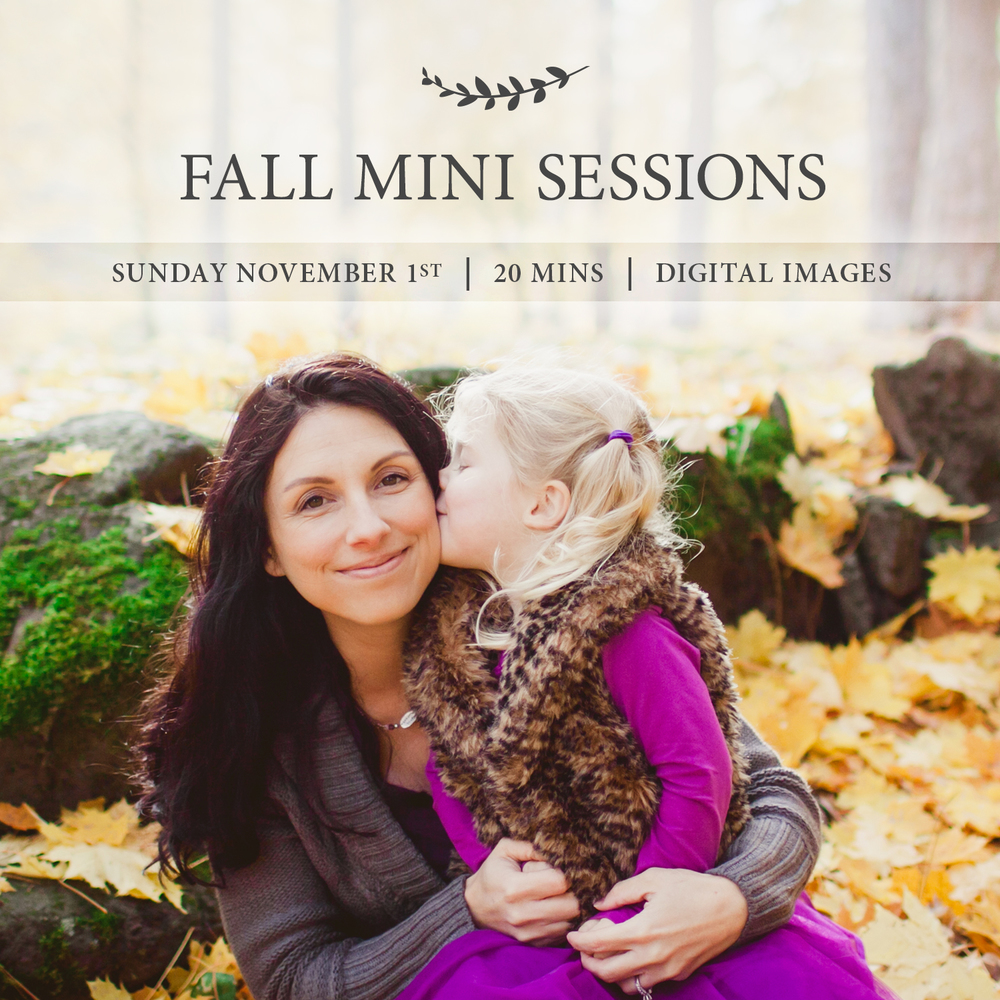 I have a few spots left for Fall Mini Session Day on Sunday, November 1st. You will receive a 20 minute session, 8 digital images, and an online gallery with a quick turnaround. Now here's a look at what you can expect the rest of the year to look like. Email me to book a fall session.