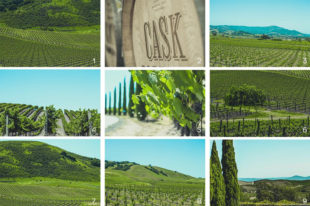 WinerySet2Numbers.jpg