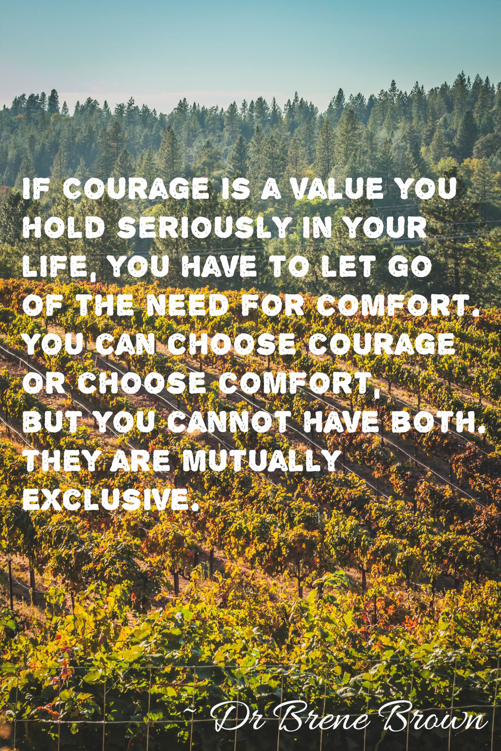 If courage is a value.jpg