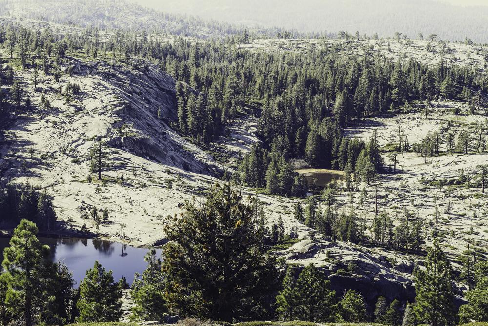Shealor Lake-5.jpg