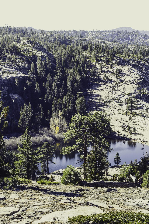 Shealor Lake-6.jpg