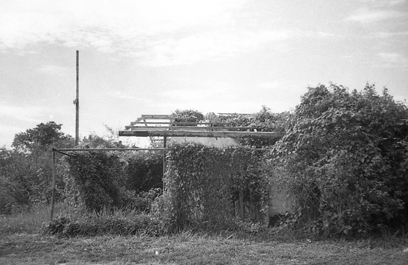 Suriname-015.jpg